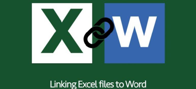 Cách làm excel trong word