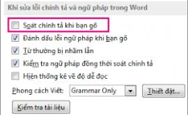 kiểm tra lỗi chính tả trong word online